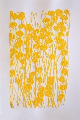 Fleurs jaunes, Coline BRUGES-RENARD