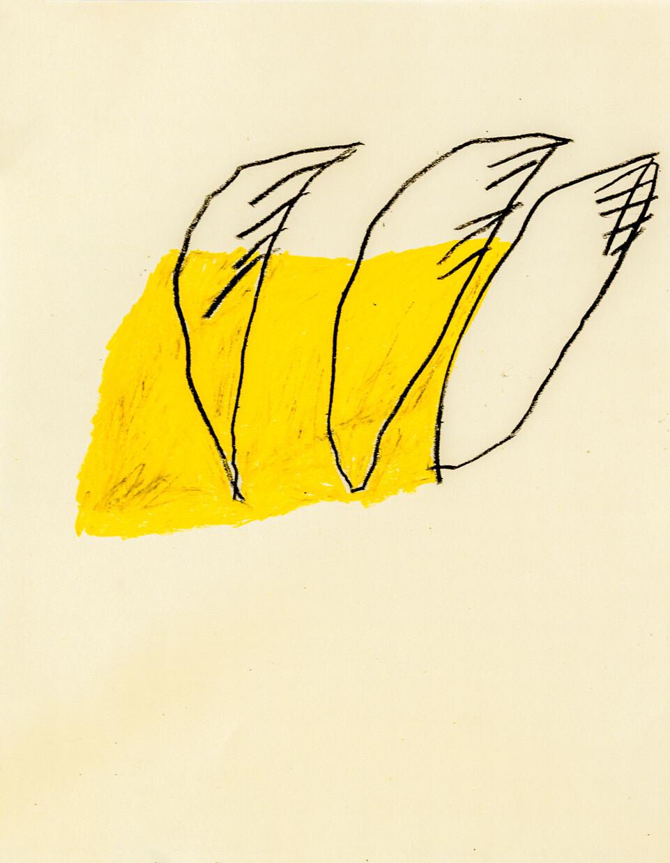 Les ailes coupées , Coline BRUGES-RENARD