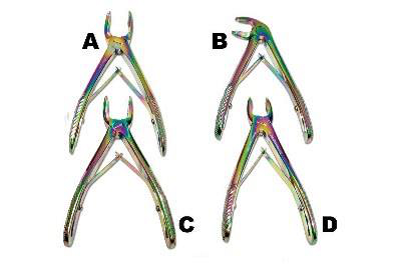 Pediatric Multi Color Extraction Forceps