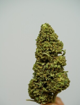 RW Lifter Hemp Flower