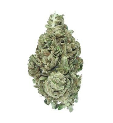 Sour Pineapple Bulk Hemp Flower | Wholesale (lb)