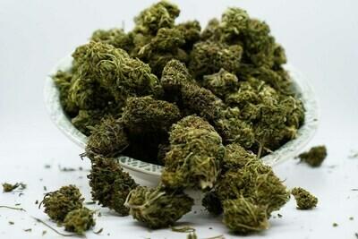 CBG Stem Cell Hemp Flower | Small Buds | Wholesale Pounds