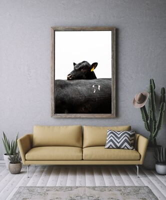 'Double Angus' - Starting from $60