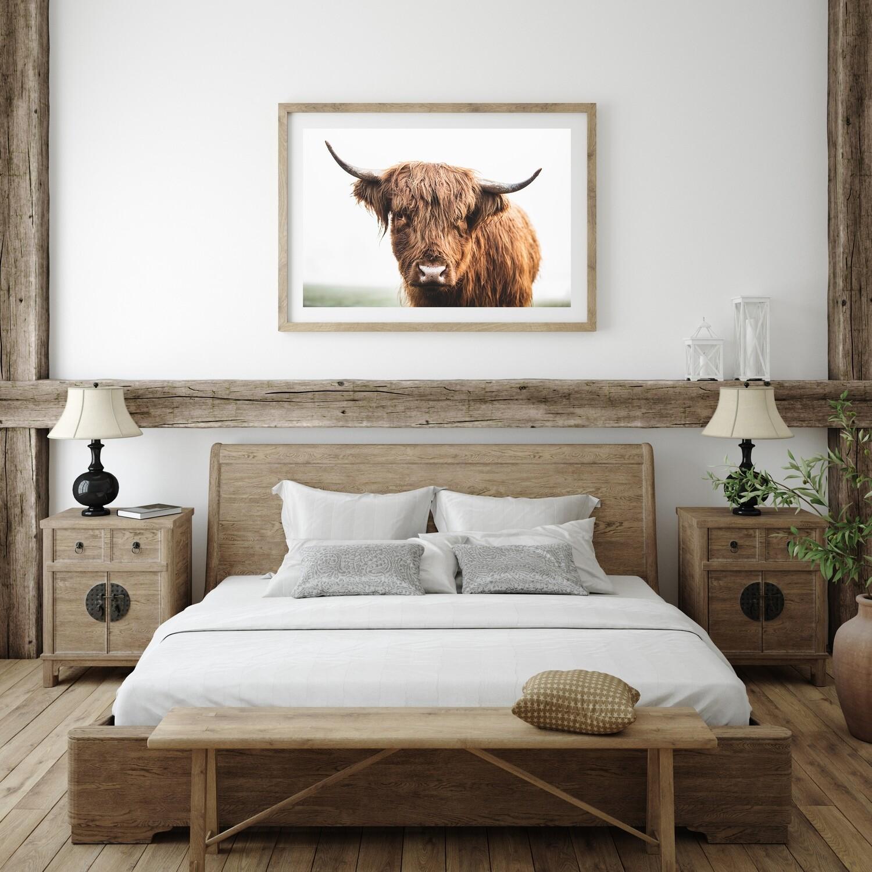 'Highland Heifer' - Starting from $60