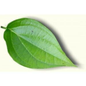 BETEL LEAVES PACK (8-10 leaves)