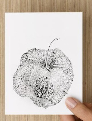 'Gooseberry -  GREETING CARD
