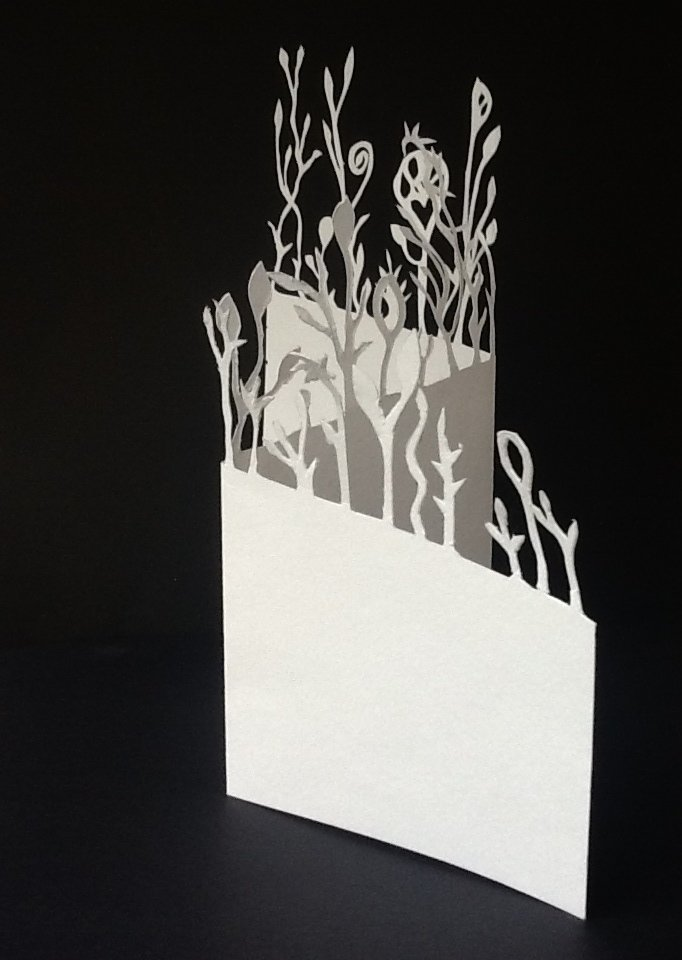 Introductory Paper Cutting and Design 10yrs - ADULTS