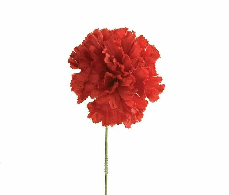 S3000RED - Carnation Pick $16.95 ( Box 100)