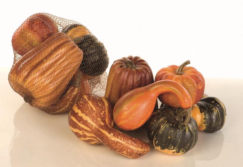 CEF04460 - 6 Assorted Nylon Lag Gourd Asst. $4.95 6pc Bag Case Pack 36