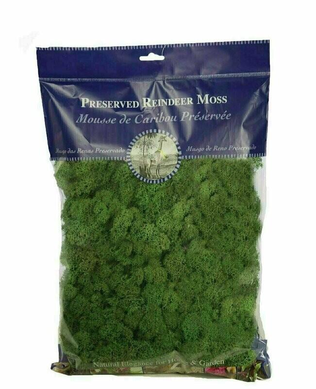 21757 - 1/2 lb Bag Forest Green Reindeer Moss