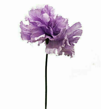 S3000LAVENDER - Carnation Pick $16.95 ( Box 100)