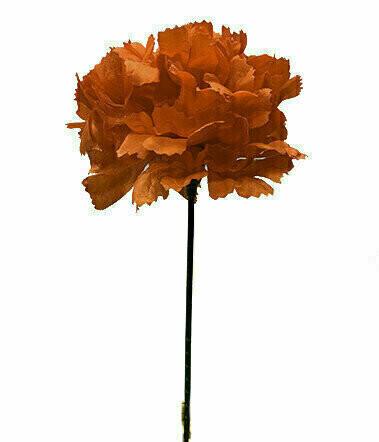 S3000RED - Carnation Pick $16.95 ( Box 100)