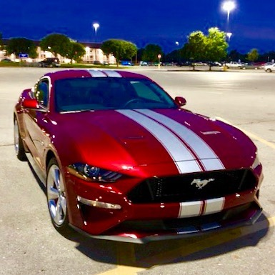 2005 - Up Mustang Shelby Style Rally Stripes