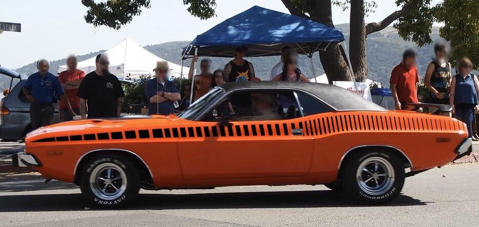 1970 - 1974 Dodge Challenger AAR Cuda Style Strobe Stripes