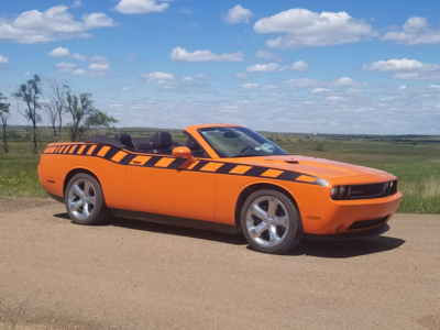 2008 - Up Dodge Challenger Drop Top Style Full Body Length Upper Strobe Side Stripes