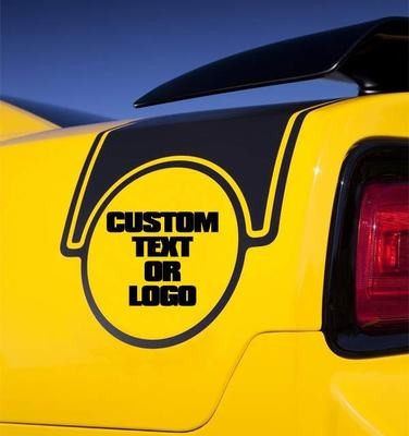 2011 - 2014 Dodge Charger 2012 Super Bee Factory Style Strip Kit