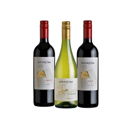 (Bundle of 3) Chilean Anakena Discovery Pack