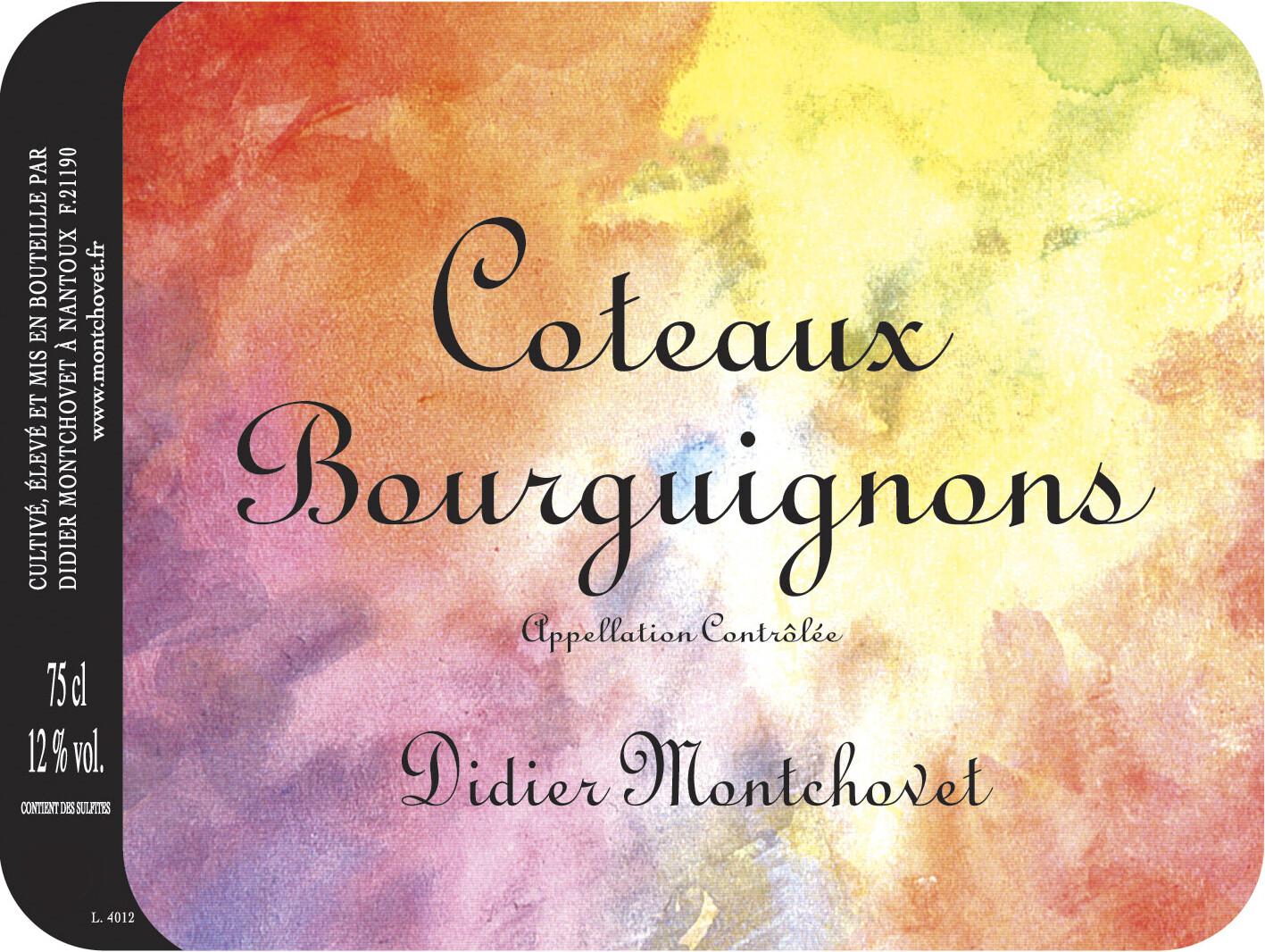 Didier Montchovet Coteaux Bourgignons 2018