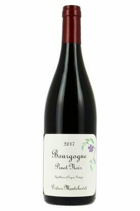 Didier Montchovet Bourgogne Pinot Noir 2017