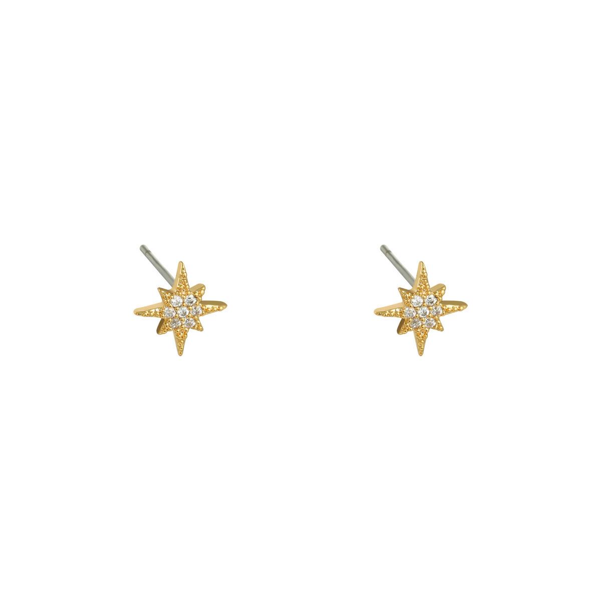 Oorbellen North Star mini