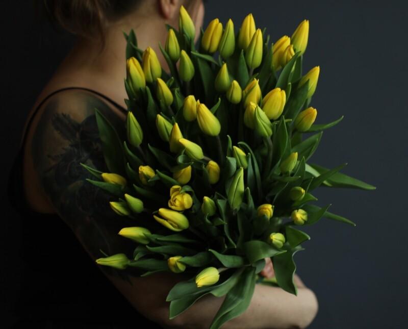Моно желтых тюльпанов