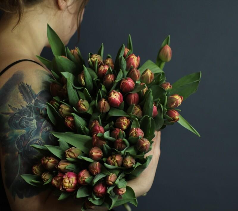 Моно пионовидных тюльпанов коломбус