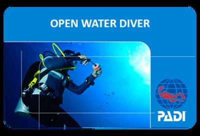 PADI Open Water Course - Private