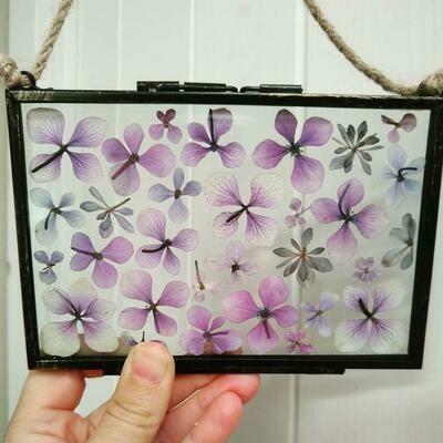 Hydrangea Frame 6 x 4 inches