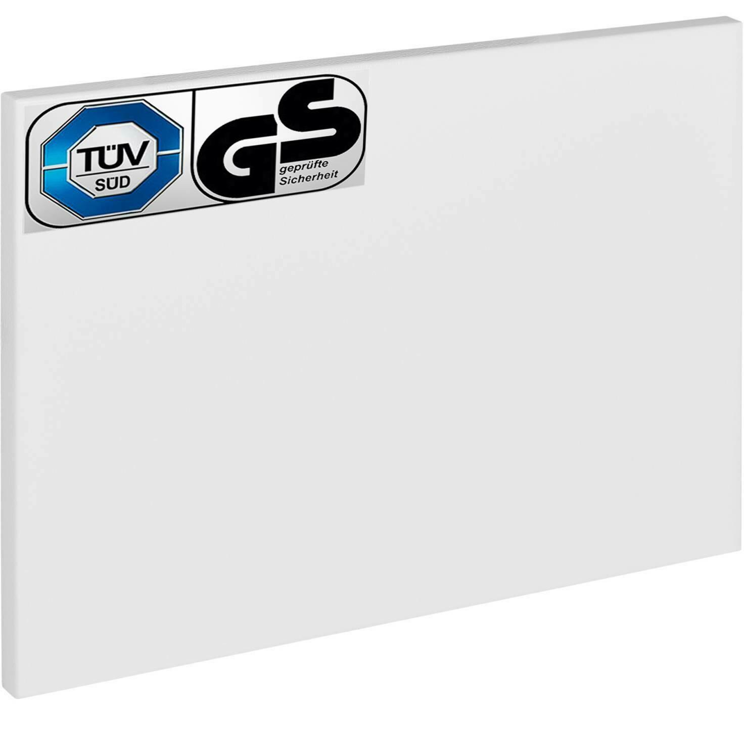 TEC TAKE CLASSIC 300 W