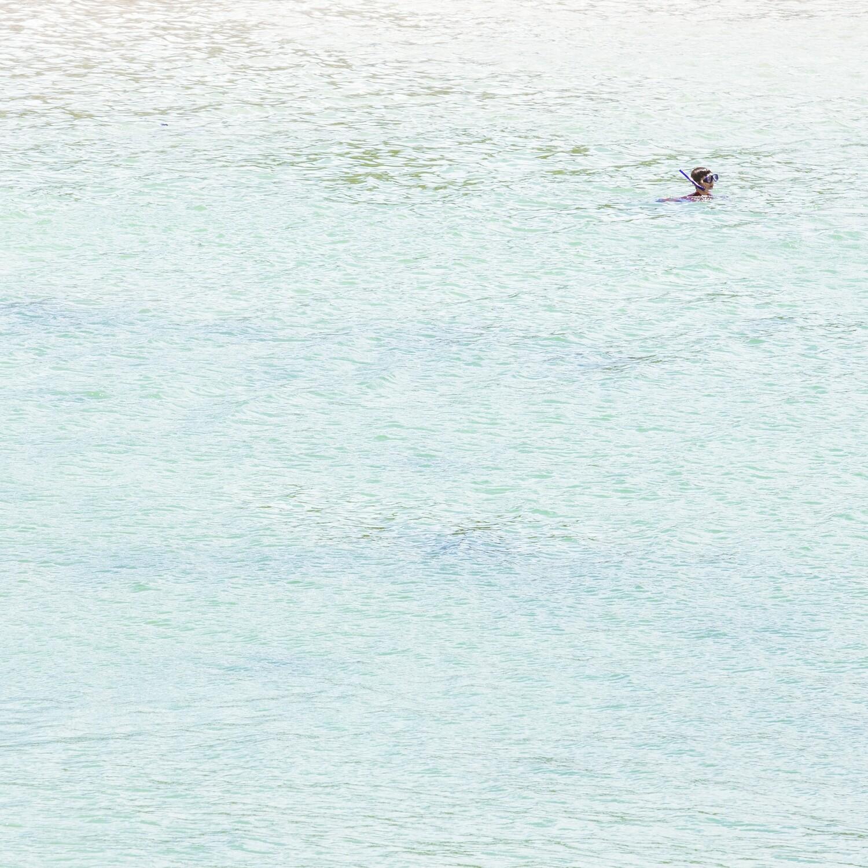 'Beach Scene (The Swimmer)'