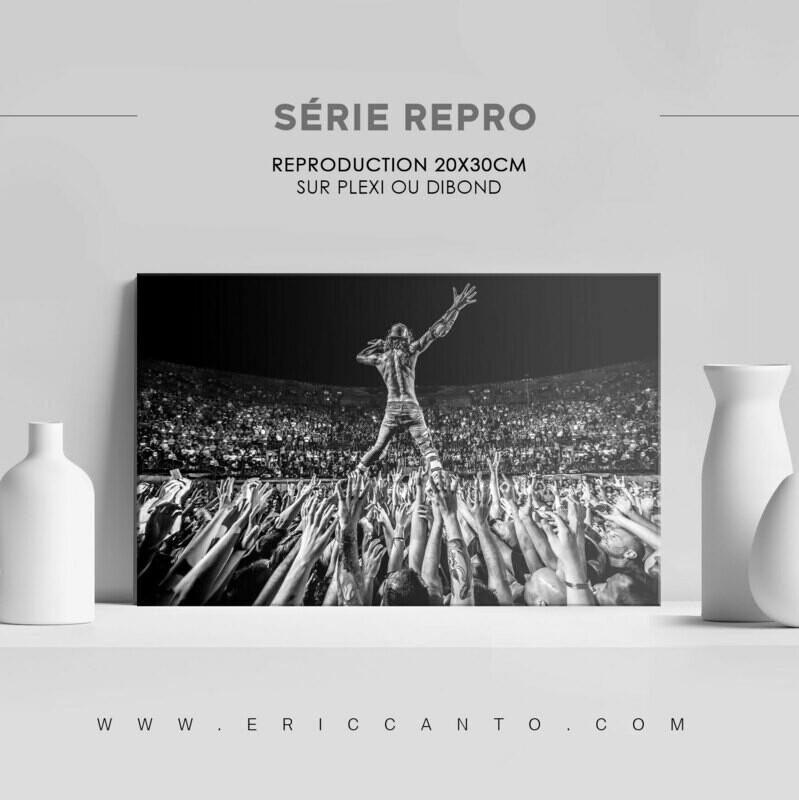 SÉRIE REPRO ALIVE