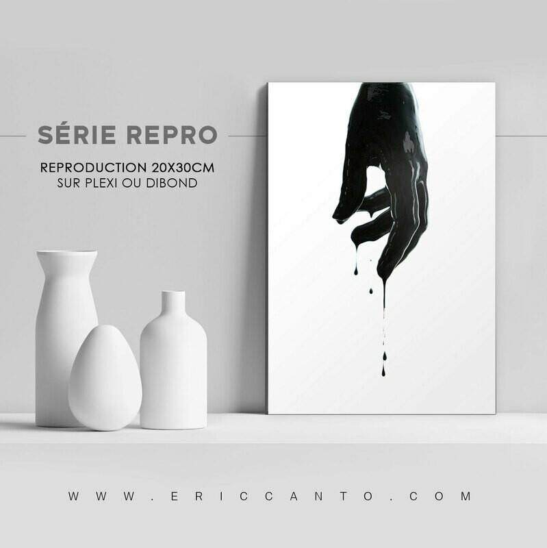 SÉRIE REPRO Matière Noire