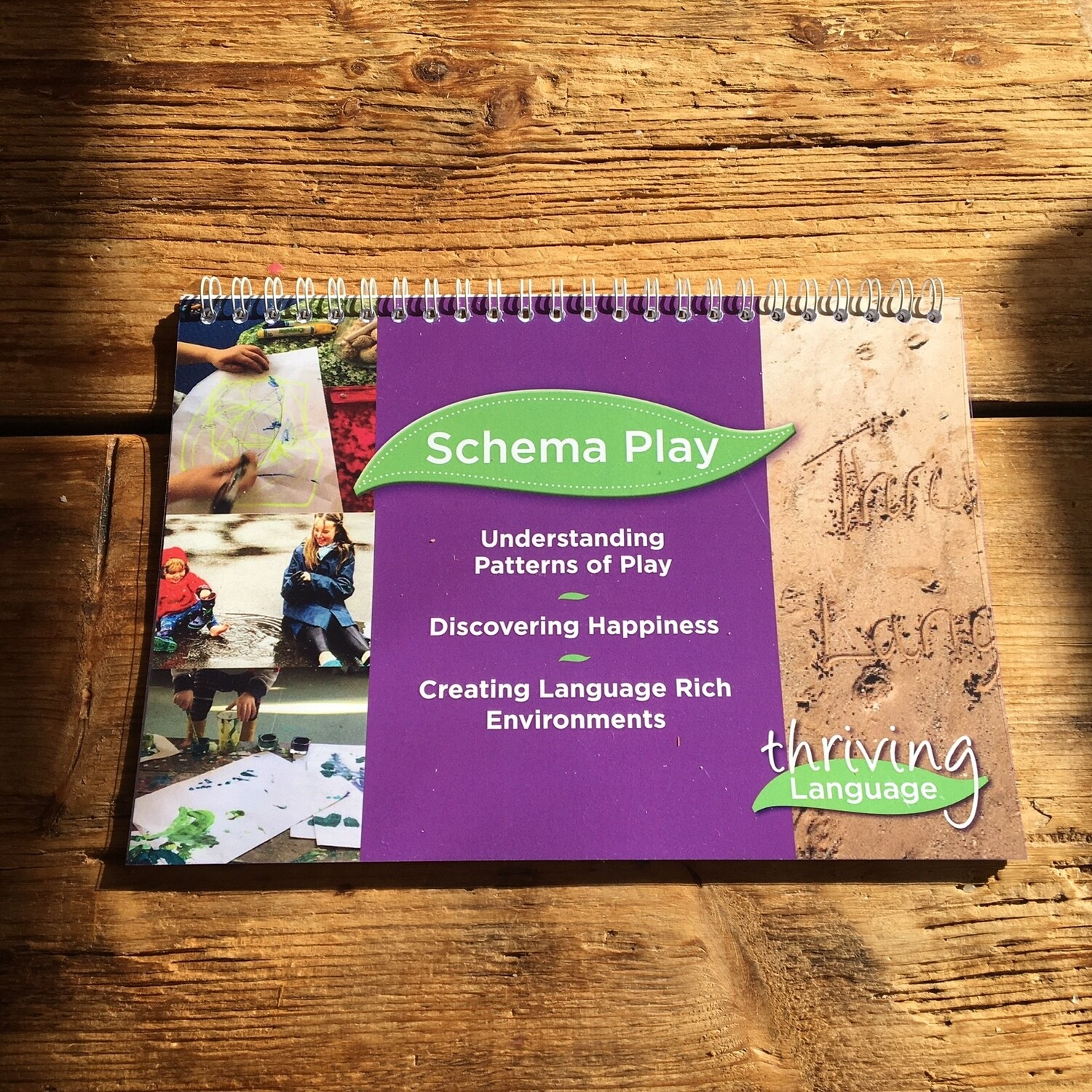 Schema Play – Understanding Patterns of Play Book – Creating Language Rich Environments