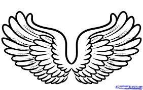 Bronze Wings 00008
