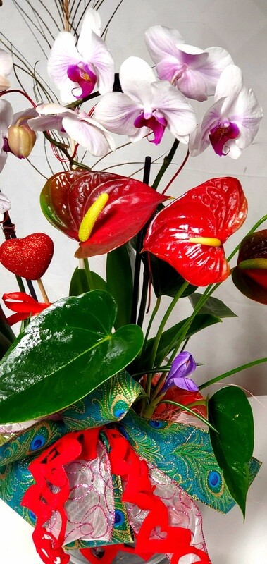 Tropical Valentine's Planter