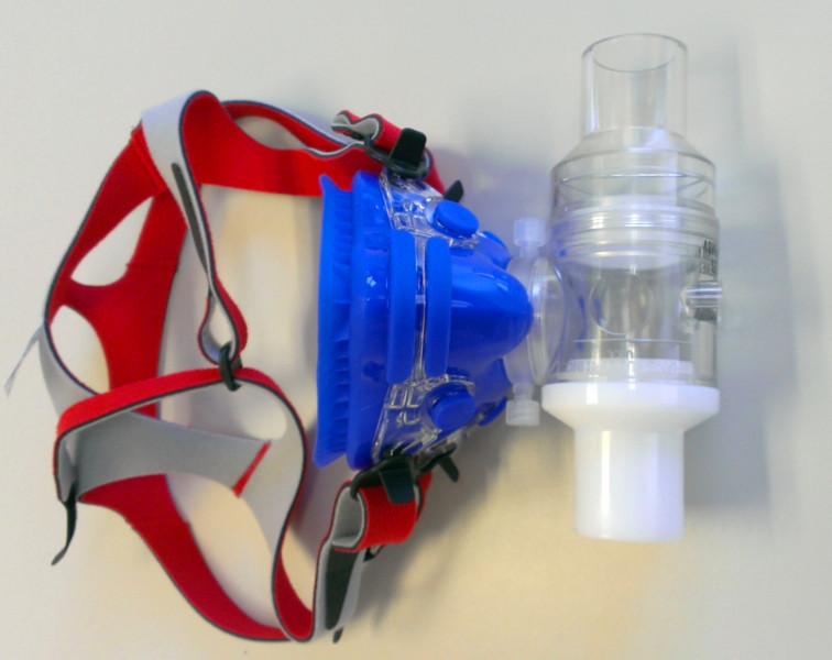 Large Mask, Head Gear, adapter and 2 Way Non-Rebreathing Valve