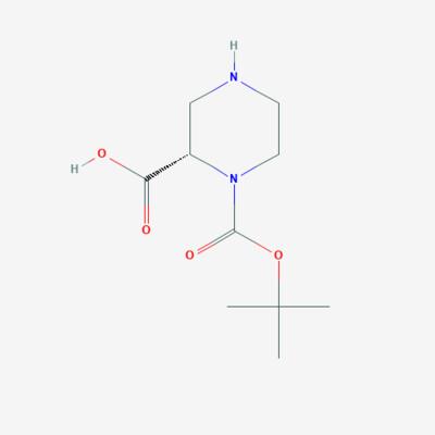 (S)-1-BOC-Piperazine–2–carboxylic acid - 159532–59–9 - (S)-1-(tert-butoxycarbonyl)piperazine-2-carboxylic acid - C10H18N2O4