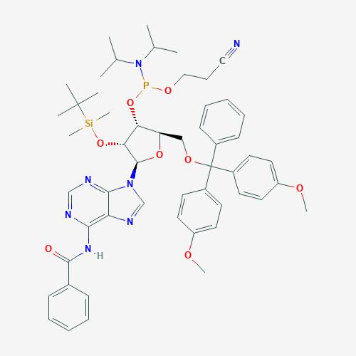5'-O-DMT-2'-OTBDMS N-Bz Adenosine Phosphoramidite (Amidite) - CAS No. 104992-55-4