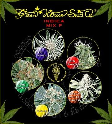 Sativa Indica Mix F Feminised Seeds