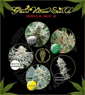 Indica Mix G Feminised Seeds
