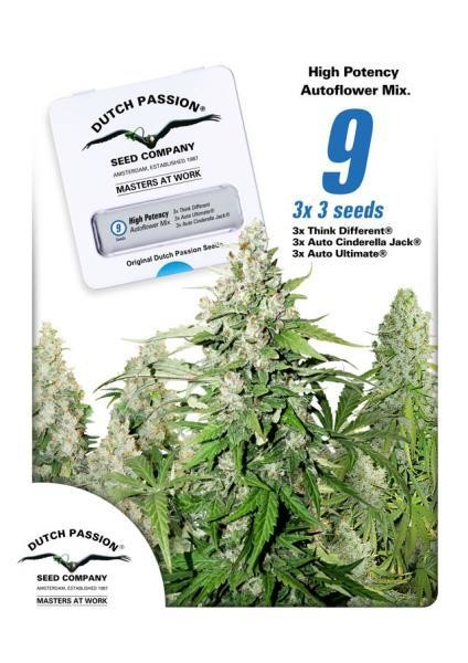 High Potency Autoflowering Mix Feminised Seeds - 9