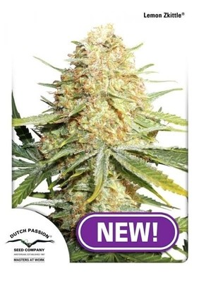 Lemon Zkittle Feminised Seeds