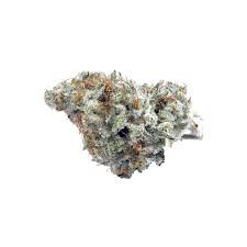 Dank Seeds - White Widow Feminized