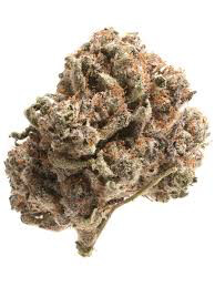 Dank Seeds - Gorilla Cookies Feminized