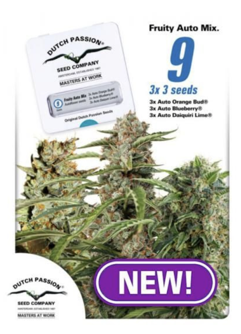 Fruity Mix Auto Feminised Seeds - 9