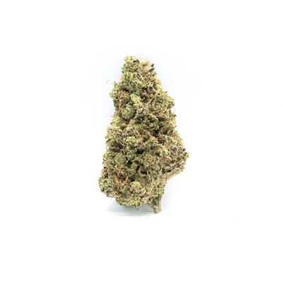 Dank Seeds - White Widow x Critical Feminized