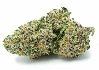 Dank Seeds - Purple Punch Feminized