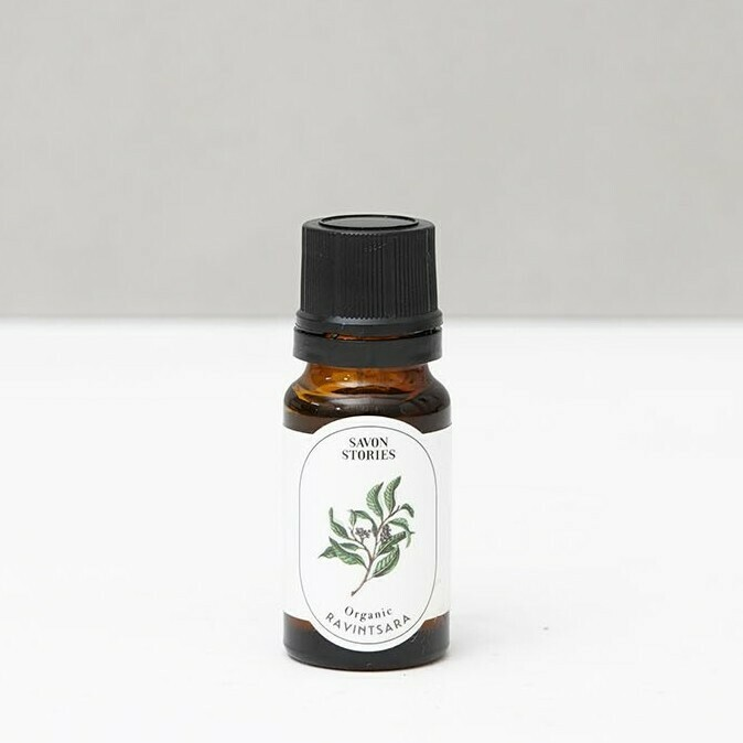 Ravintsara - Organic Essential Oil - 10ml
