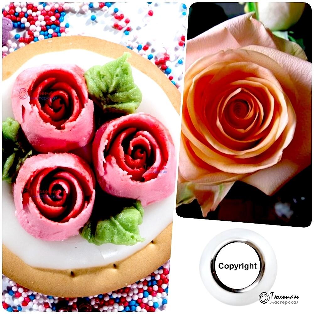 Насадка Роза №109 Романтика | L размер (Russian Rose Nozzle #109 - Romance | L size | By Tulip Workshop)
