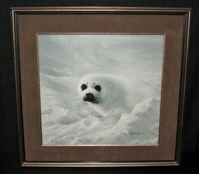 Charles Frace Baby Harp Seal Limited Edition 28 x 27 Framed Print, Signed